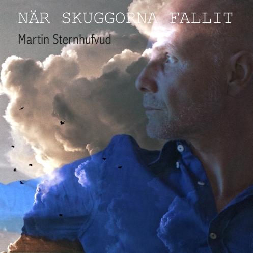 Martin Sternhufvud